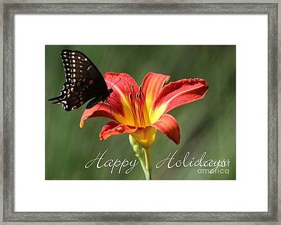 Butterfly And Lily Holiday Card Framed Print