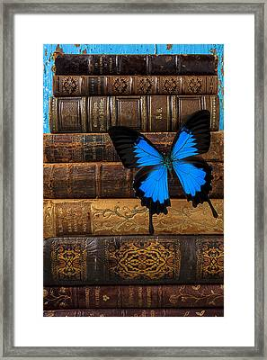 Butterfly And Old Books Framed Print by Garry Gay
