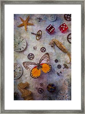 Butterfly And Seahorse Framed Print by Garry Gay