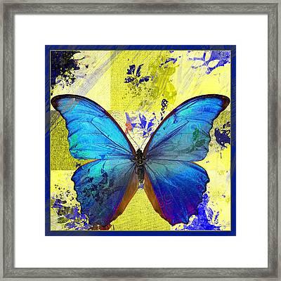 Butterfly Art - S14avbt01 Framed Print