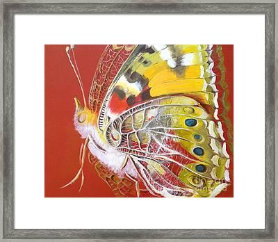 Butterfly Basic Framed Print