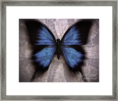Butterfly Becomes The Mosaic  Framed Print