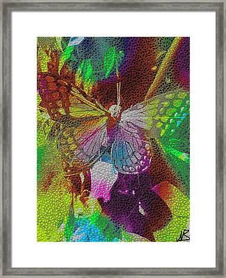 Butterfly By Nico Bielow Framed Print by Nico Bielow