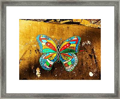 Butterfly Framed Print by Christian Rooney