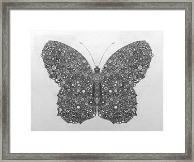 Butterfly Circle Bonanza Framed Print