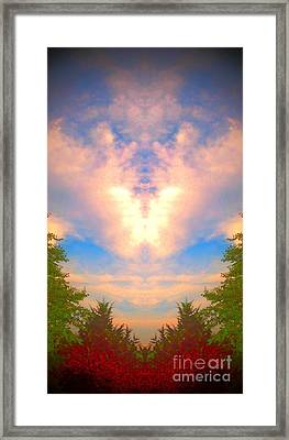 Butterfly Cloud Framed Print
