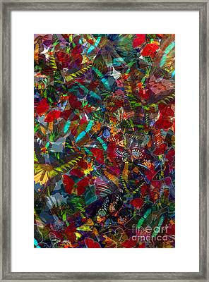 Framed Print featuring the photograph Butterfly Collage Red by Robert Meanor