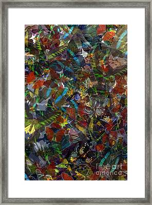Framed Print featuring the photograph Butterfly Collage by Robert Meanor