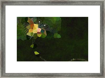 Butterfly Colors Framed Print by Christine Mulgrew