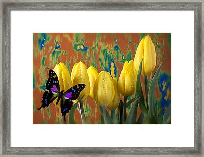 Butterfly Dreams Framed Print