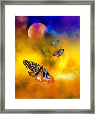 Butterfly Expansion Framed Print by Bruce Manaka