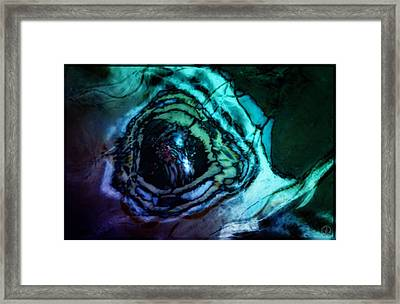 Butterfly Eye Framed Print by Gun Legler