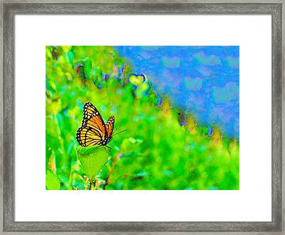 Framed Print featuring the photograph Butterfly Fantasy by Marianne Campolongo