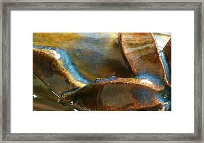 Butterfly Fly By Framed Print by Jillian ODwyer