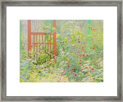 Butterfly Garded II Framed Print
