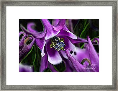 Framed Print featuring the digital art Butterfly Garden 04 - Columbine by E B Schmidt
