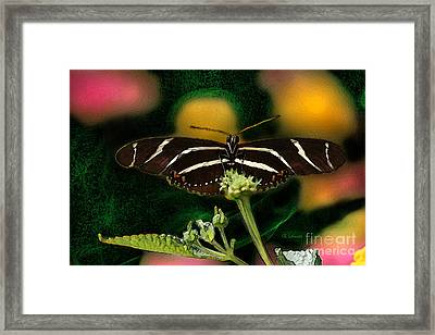Framed Print featuring the digital art Butterfly Garden 06 - Zebra Heliconian by E B Schmidt