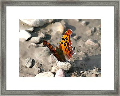 Framed Print featuring the digital art Butterfly Garden 09 - Eastern Comma by E B Schmidt