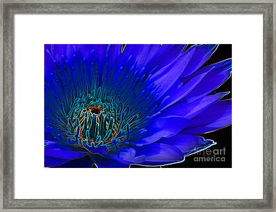 Framed Print featuring the digital art Butterfly Garden 11 - Water Lily by E B Schmidt