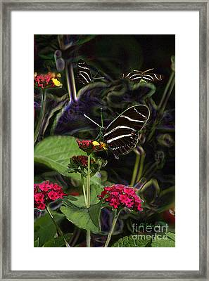 Framed Print featuring the digital art Butterfly Garden 19 - Zebra Heliconian by E B Schmidt