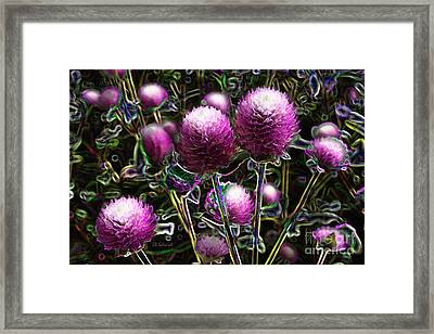 Framed Print featuring the digital art Butterfly Garden 20 - Globe Amaranth by E B Schmidt