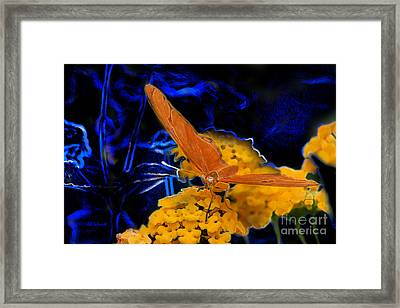 Framed Print featuring the digital art Butterfly Garden 22 - Julia Heliconian by E B Schmidt