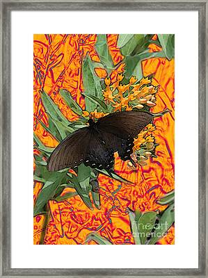 Framed Print featuring the digital art Butterfly Garden 25 - Spicebush Swallowtail by E B Schmidt