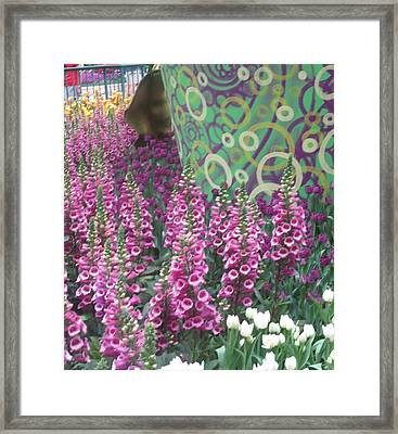 Framed Print featuring the photograph Butterfly Garden Purple White Flowers Painted Wall by Navin Joshi