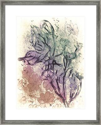 Butterfly Happiness Framed Print by Jill Balsam