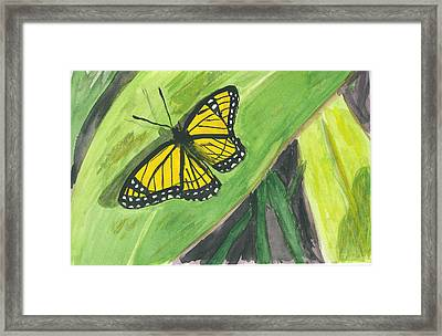 Framed Print featuring the painting Butterfly In Vermont Corn Field by Donna Walsh