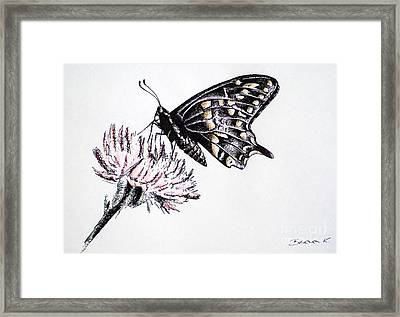 Butterfly Framed Print by Katharina Filus