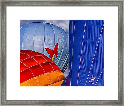 Butterfly Framed Print by Ken Evans