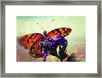 Butterfly Kissed Framed Print