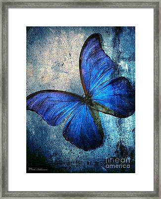 Butterfly Framed Print by Mark Ashkenazi