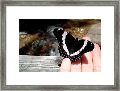 Butterfly On Fingertips Framed Print