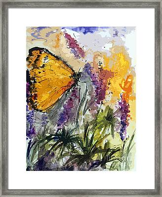 Butterfly On Lupines Framed Print