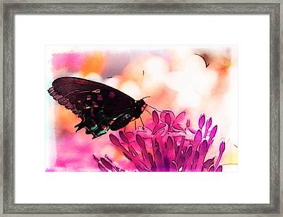 Breathing Into The Sunlight Framed Print