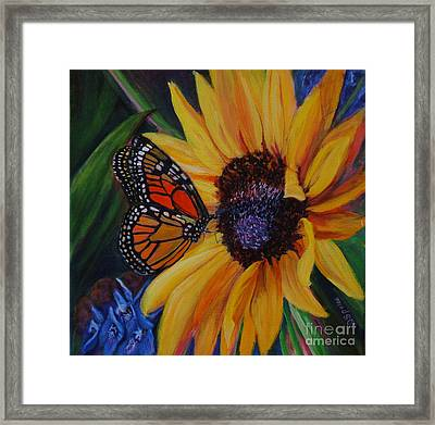 Butterfly On Sunflower Framed Print by Diane Speirs
