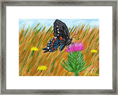Butterfly On Thistle Framed Print by Vicki Maheu