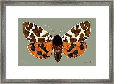 Butterfly -  Pop Stylised Etching Art Poster  Framed Print by Kim Wang
