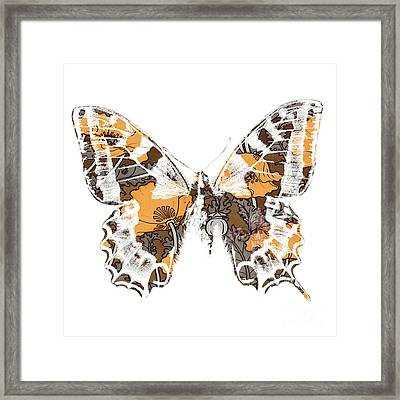 Butterfly Framed Print by Ramneek Narang