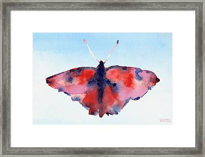 Butterfly Red And Blue Watercolor Painting Framed Print by Beverly Brown