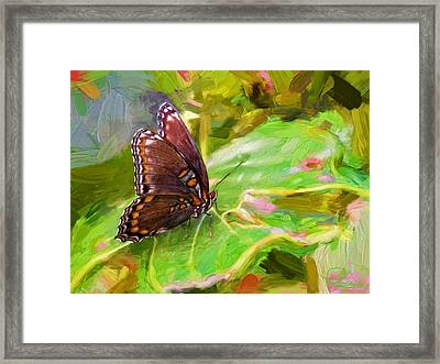 Butterfly - Red-spotted Purple Framed Print by Ludwig Keck