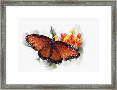 Butterfly Framed Print by Roger Lighterness