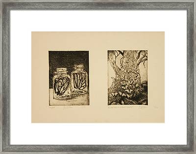 Butterfly Series Framed Print by Katherine Puterka