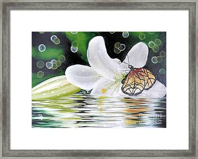 Butterfly Series Seven Framed Print