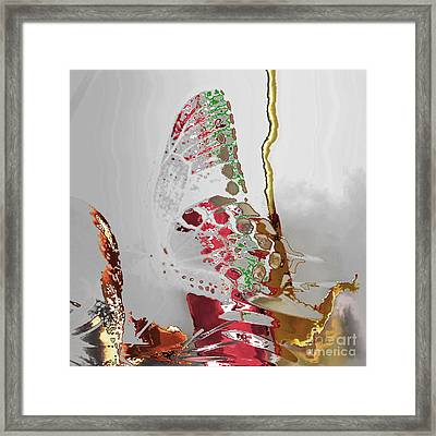 Butterfly Framed Print by Soumya Bouchachi