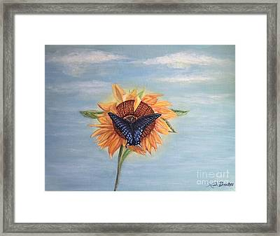 Butterfly Sunday Full Length Version Framed Print
