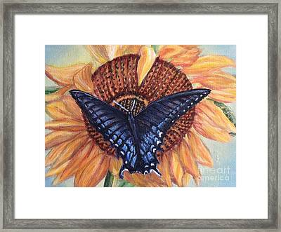 Butterfly Sunday Up-close Framed Print