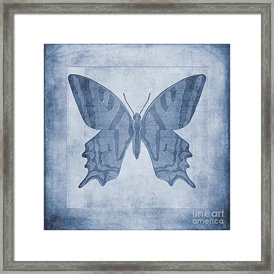 Butterfly Textures Cyanotype Framed Print by John Edwards